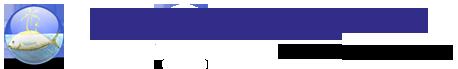 bluenile_logo